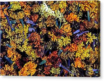 Future Marigolds Canvas Print