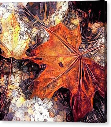Autumn Scene Canvas Print - Fuzzy Sweater Weather by Susan Maxwell Schmidt