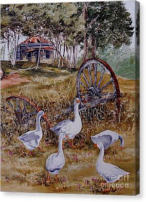 Gaggling Geese Canvas Print by Val Stokes
