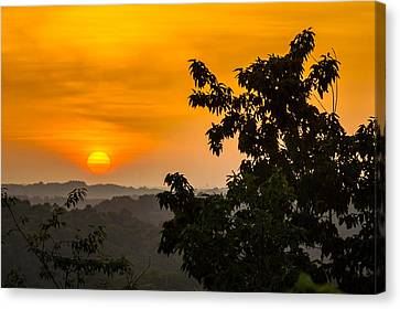 Gainesville Sunrise Canvas Print by Michael Sussman