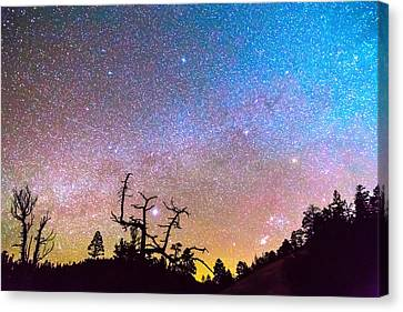 James Insogna Canvas Print - Galaxy Night by James BO  Insogna