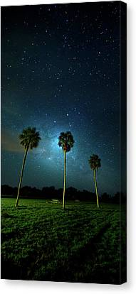 Galaxy Palms Canvas Print by Mark Andrew Thomas