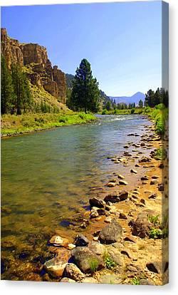 Gallitan River 1 Canvas Print by Marty Koch