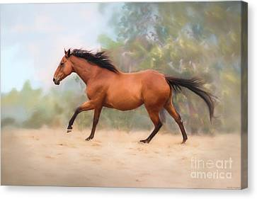 Bay Horse Canvas Print - Galloping Thoroughbred Horse by Michelle Wrighton