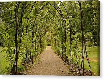 Garden Archway Canvas Print