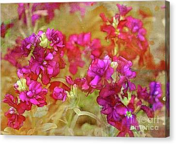 Garden Beauty Canvas Print by Judi Bagwell