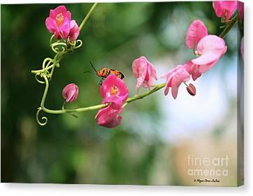 Canvas Print featuring the photograph Garden Bug by Megan Dirsa-DuBois