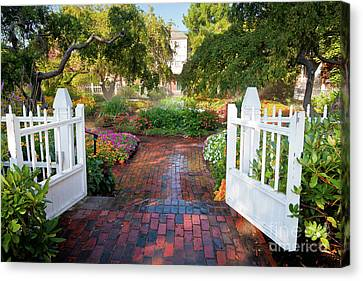 Canvas Print featuring the photograph Garden Gate by Susan Cole Kelly