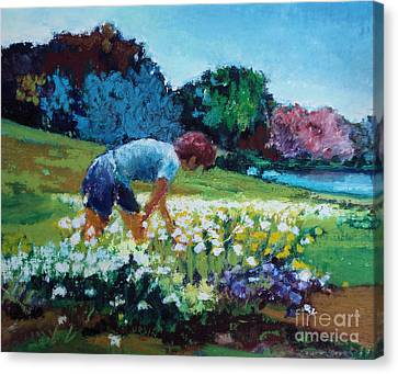 Canvas Print featuring the painting Garden Girl by Diane Ursin