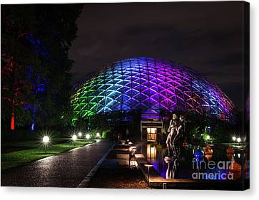 Garden Globe At Night Canvas Print by Andrea Silies