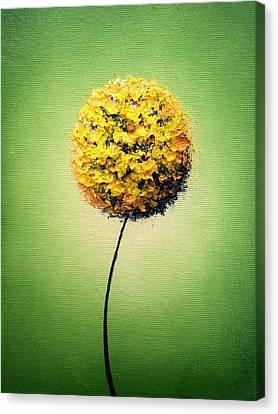 Garden Glow Canvas Print by Rachel Bingaman