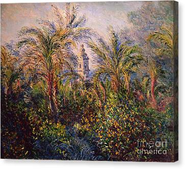 Garden In Bordighera Impression Of Morning Canvas Print by Claude Monet