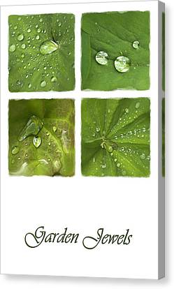 Garden Jewels Canvas Print by Hazy Apple