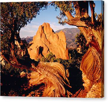 Garden Of The Gods Co Usa Canvas Print by Panoramic Images