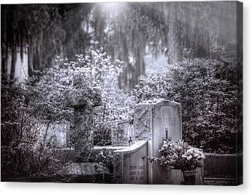 Garden Of Tranquility Canvas Print by Mark Andrew Thomas
