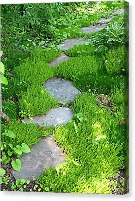 Garden Path Canvas Print by Idaho Scenic Images Linda Lantzy
