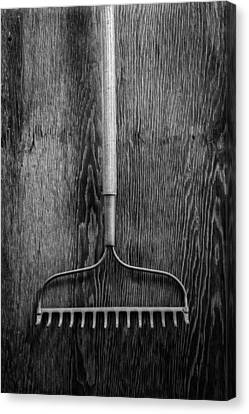 Garden Rake Up Canvas Print by YoPedro