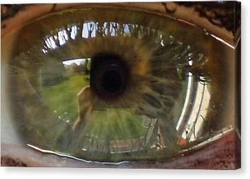 Garden Reflected In Eye Canvas Print by Shirley anne Dunne