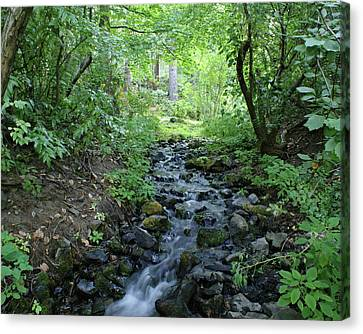 Canvas Print featuring the photograph Garden Springs Creek In Spokane by Ben Upham III