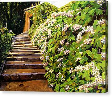 Garden Stairway Tuscany Canvas Print by David Lloyd Glover