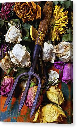 Garden Tool And Old Roses Canvas Print by Garry Gay