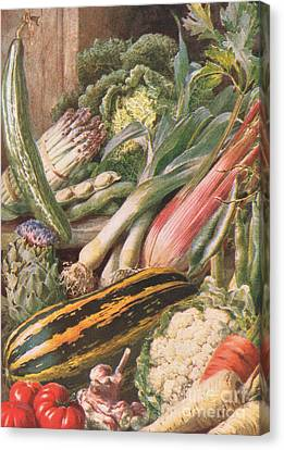 Garden Vegetables Canvas Print by Louis Fairfax Muckley