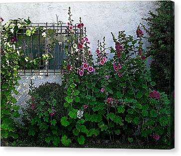 Garden Window Canvas Print by Kathleen Stephens