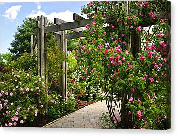 Garden With Roses Canvas Print by Elena Elisseeva