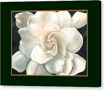 White Gardenia Canvas Print - Gardenia by Darlene Green