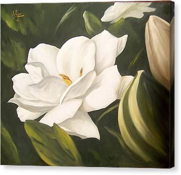 Gardenia Canvas Print by Natalia Tejera