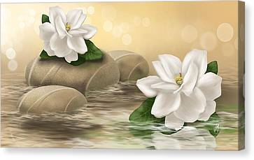 White Gardenia Canvas Print - Gardenia by Veronica Minozzi