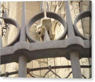 Gargoyle On Notre Dame Canvas Print by John Julio