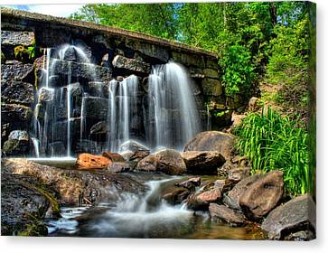 Canvas Print featuring the photograph Garland Falls II by Greg DeBeck