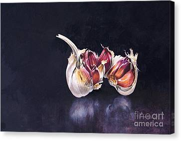 Garlic On Black Canvas Print by John Francis