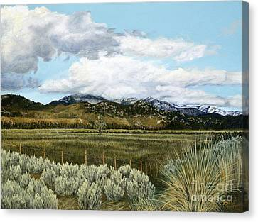 Garner Valley Meadow Canvas Print