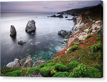 Garrapata Shore Canvas Print by Eric Foltz