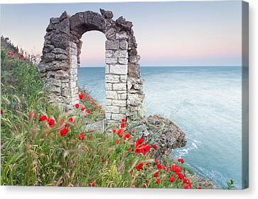 Gate In The Poppies Canvas Print by Evgeni Dinev
