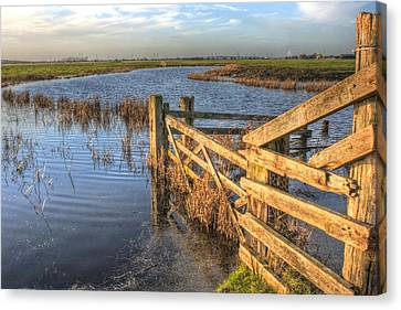 Gate On The Marsh Canvas Print by Dave Godden