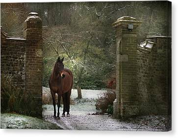 Gate To Another World Canvas Print by Dorota Kudyba