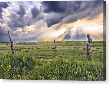 Barbed Wire Fences Canvas Print - Gates Of Heaven by Jill Van Doren Rolo