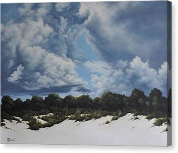 Gathering Storm Canvas Print by Mary Taglieri
