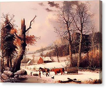 Cattle Dog Canvas Print - Gathering Wood For Winter by Mountain Dreams