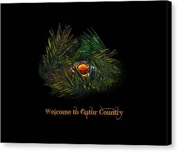 Gator Country  Canvas Print