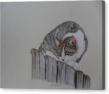 Gatto In Agguato Canvas Print by Umberta Ruffini
