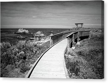 Gazebo Boardwalk At Asilomar B And W Canvas Print by Joyce Dickens