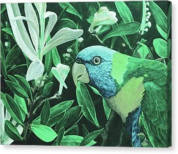 G'day Mate - Jade Canvas Print by Julie Turner