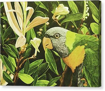 G'day Mate - Lemonlime Canvas Print by Julie Turner