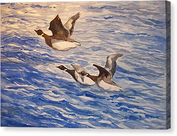 Geese In Flight Canvas Print by Siona Koubek