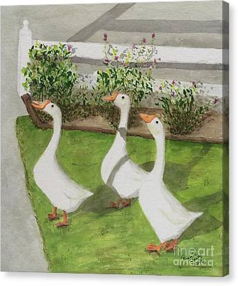 Geese Police Canvas Print by Bonnie Young