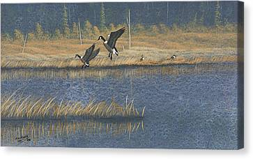 Canvas Print featuring the painting Geese by Richard Faulkner